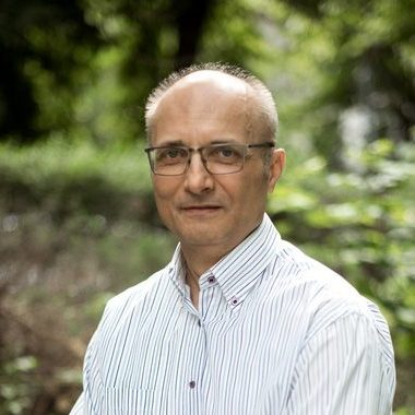 Goran Strajnić